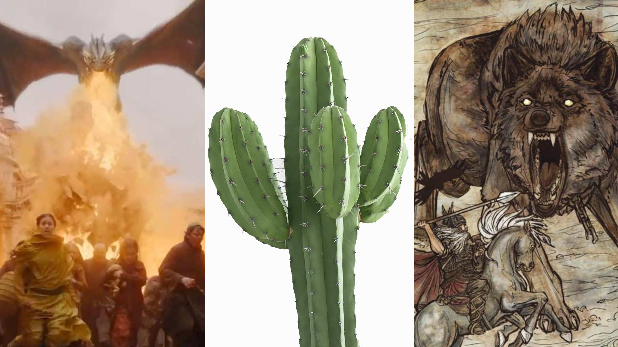 Images of a dragon breathing fire, a cactus, and Odin fighting a giant wolf